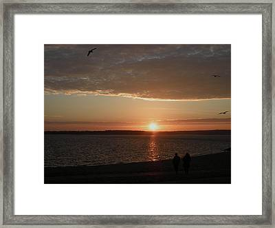 The Sky Is Falling Framed Print by Kate Gallagher