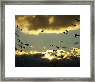 The Sky Opened Framed Print by Gothicolors Donna