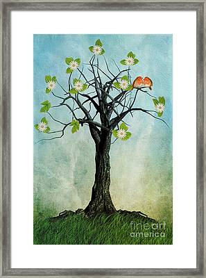 The Song Of Spring Framed Print by John Edwards