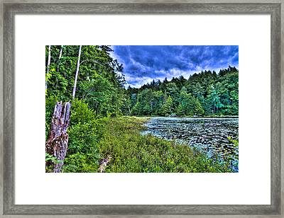 The South Shore Of Cary Lake Framed Print by David Patterson