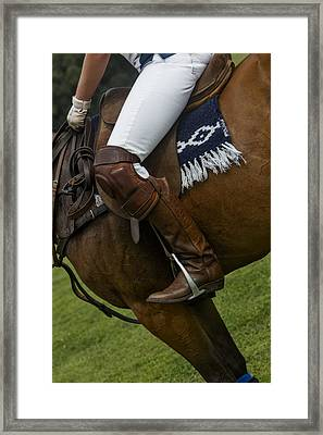 The Sport Of Kings Framed Print by Susan Candelario