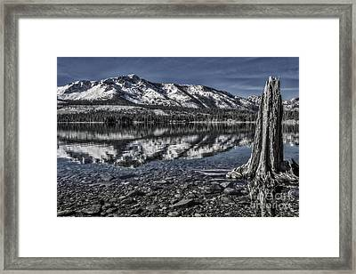 The Stump And The Mountain Framed Print by Mitch Shindelbower