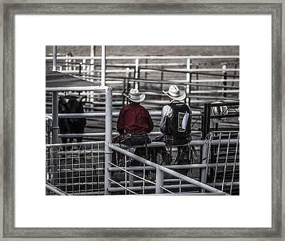 The Stare-off Begins Framed Print by Amber Kresge