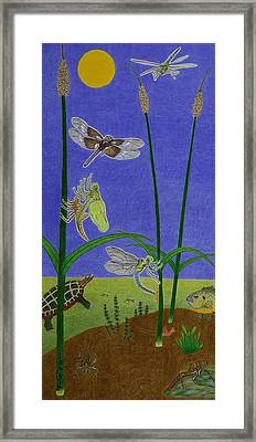 The Story Of The Dragonfly With Description Framed Print by Gerald Strine