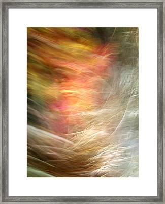 The Subconscious Framed Print by Munir Alawi