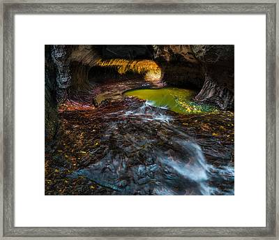 The Subway At Zion National Park Framed Print by Larry Marshall