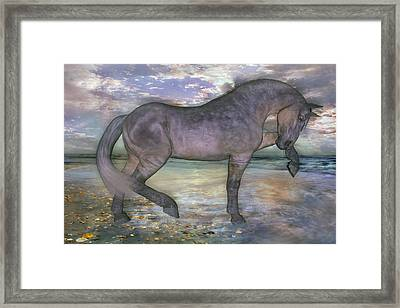 The Sunrise Horse Framed Print by Betsy C Knapp