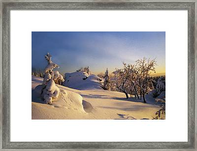 The Sunset Framed Print by Aged Pixel