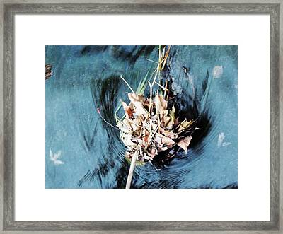 The Swirl Framed Print by Todd Sherlock