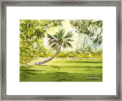 The Tarzan Tree - Wakulla Springs State Park Framed Print by Bill Holkham