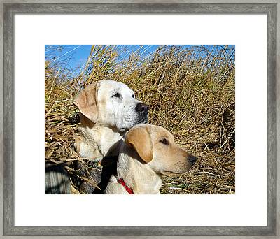 The Duck Hunting Team Framed Print by Jean Noren