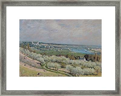 The Terrace At Saint Germain Framed Print by Alfred Sisley