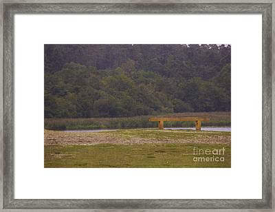 The Thinking Bench Framed Print by Michelle Orai