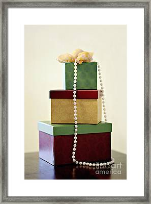 Three Gifts Framed Print by Trish Mistric