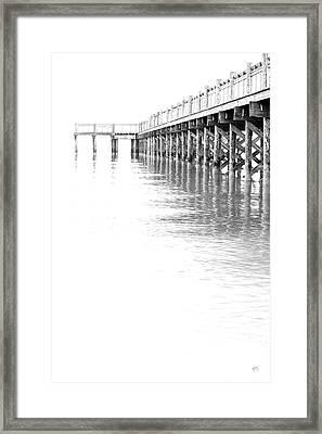 The Tide Framed Print by Karol Livote