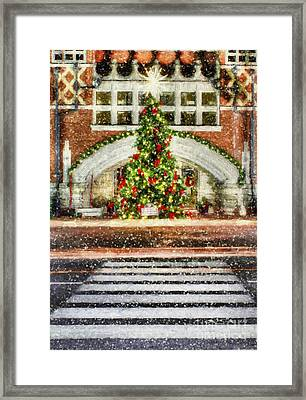 The Town Christmas Tree Framed Print by Darren Fisher