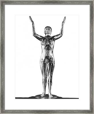 The Transparent Woman Display Framed Print by Underwood Archives