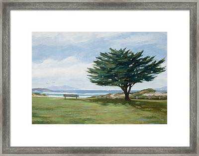 The Tree At Marina Park Framed Print by Tina Obrien