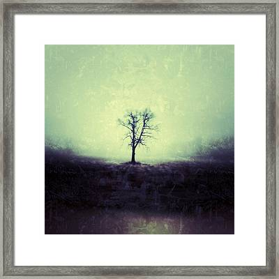 The Tree Framed Print by Jeff Klingler