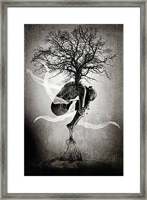 The Tree Of Life Framed Print by Erik Brede