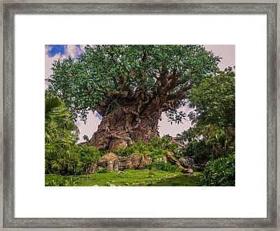 The Tree Of Life Framed Print by Zina Stromberg