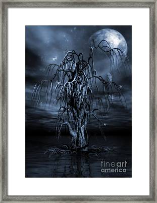 The Tree Of Sawols Cyanotype Framed Print by John Edwards