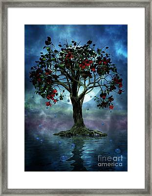 The Tree That Wept A Lake Of Tears Framed Print by John Edwards