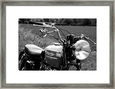 The Trophy Framed Print by Mark Rogan