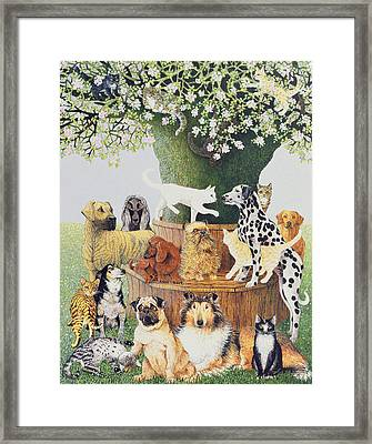 The Trysting Tree Framed Print by Pat Scott