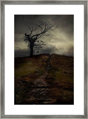 The Tyre Swinger Framed Print by Jaroslaw Blaminsky