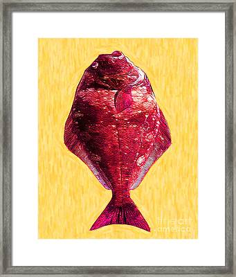 The Ugly Fish 20130723mum38 Framed Print by Wingsdomain Art and Photography