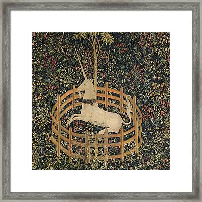 The Unicorn Captured Framed Print by Unknown