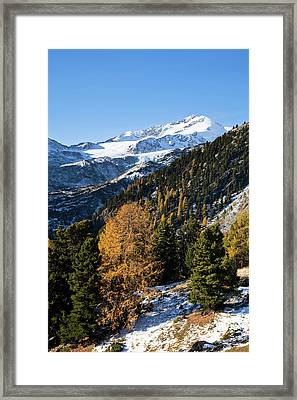 The Upper Valley Martelltal In Fall Framed Print by Martin Zwick