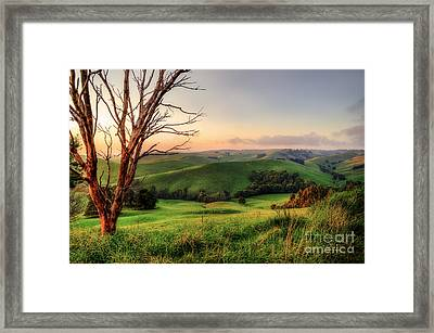 The Valley Framed Print by Ray Warren