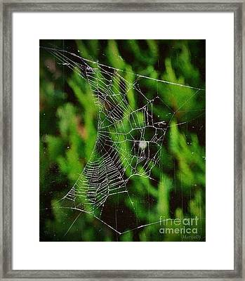 The Value Framed Print by Marija Djedovic