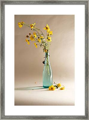 The Vase Framed Print by Mary Lee Dereske