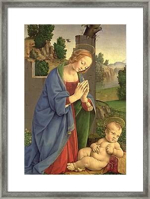 The Virgin Adoring The Child Framed Print by Lorenzo di Credi