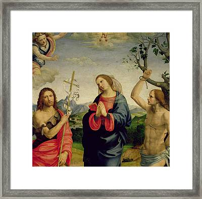 The Virgin With Saints Sebastian And John The Baptist Framed Print by Timoteo Viti