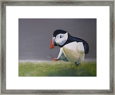 The Walking Puffin Framed Print by Eric Burgess-Ray