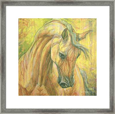 The Warm-up Framed Print by Silvana Gabudean