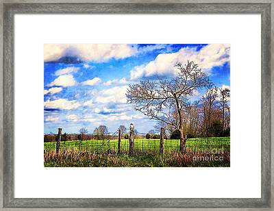 The Watcher Framed Print by Darren Fisher