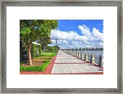 The Water Park Framed Print by Donnie Smith