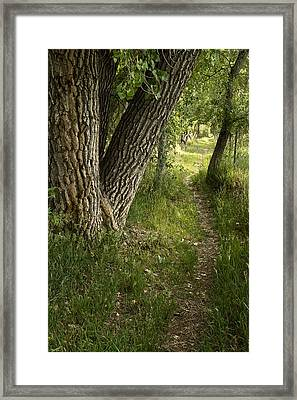 The Way Home Framed Print by Michael Van Beber