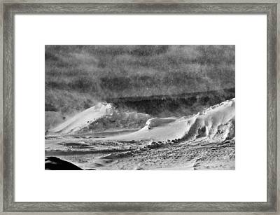 The Way Life Should Be Framed Print by Susan Capuano