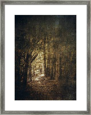 The Way Out Framed Print by Scott Norris