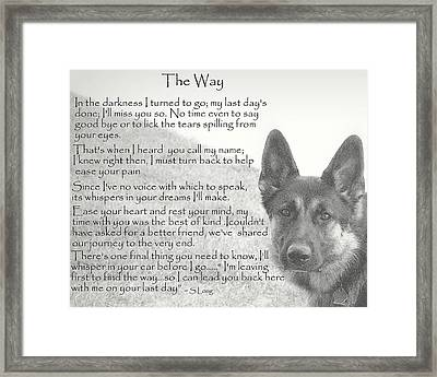 The Way Framed Print by Sue Long