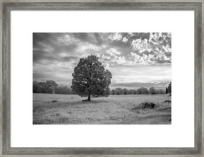 The Wheatfield 8d00091 Framed Print by Guy Whiteley