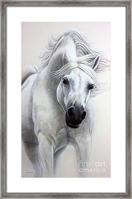 The White Horse Framed Print by Sandi Baker