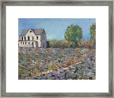 The White House Framed Print by David Zimmerman