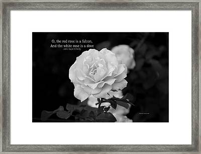 The White Rose Is A Dove Framed Print by Thomas Woolworth
